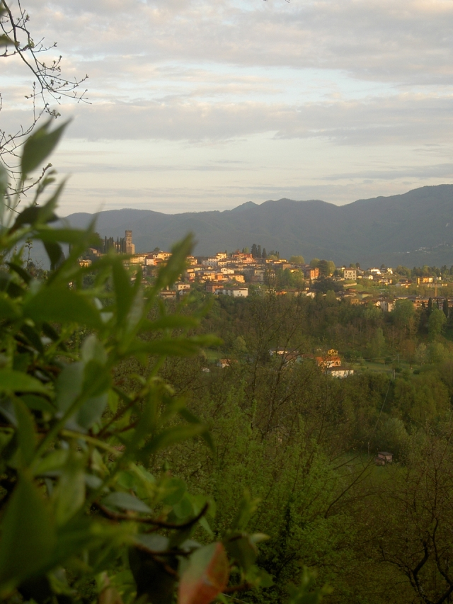 Barga april 20142